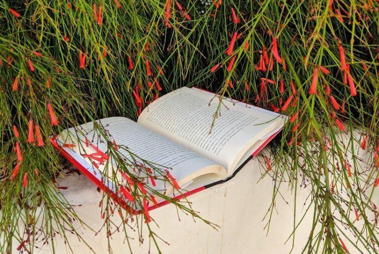Booklist Queen's 2020 Reading Challenge