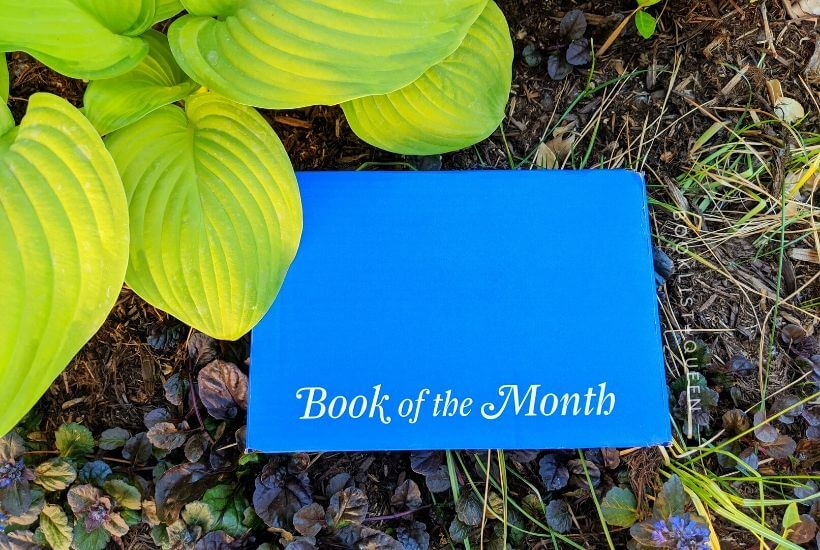 Book of the Month box in garden