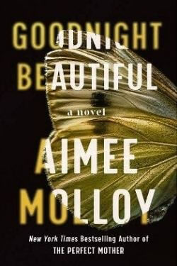 book cover Goodnight Beautiful by Aimee Molloy