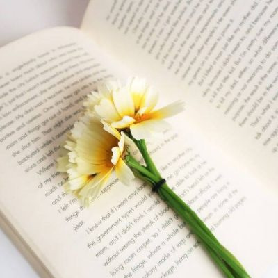 open book, yellow flower