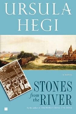 book cover Stones from the River by Ursual Hegi