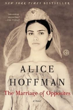 book cover The Marriage of Opposites by Alice Hoffman