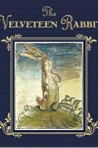 book cover The Velveteen Rabbit by Margery Williams