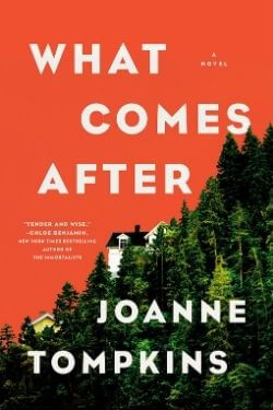book cover What Comes After by Joanne Tompkins